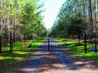 1148 Trio Rd, Andrews, SC 29510