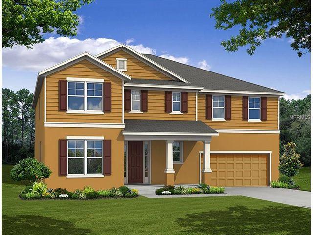 14424 Brushwood Way Winter Garden Fl 34787 New Home