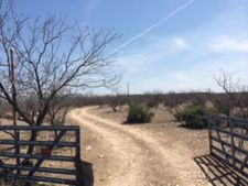 Twin Lakes Ln, San Angelo, TX 76904