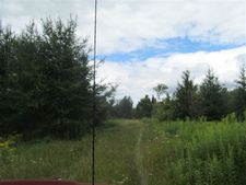 9.5 Acres On Apple Rd, Tigerton, WI 54486