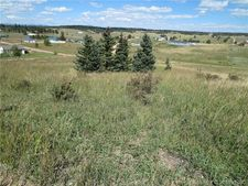 749 Maid Marian Dr, Divide, CO 80814