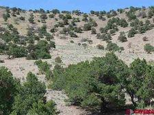 Parcel1 Elk Mountain Spgs, Saguache, CO 81149
