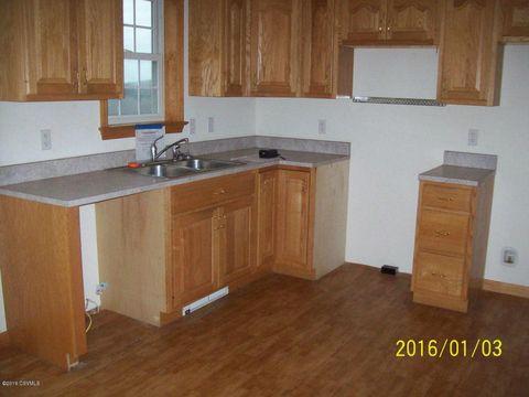 30 Chubb Ln, Mount Pleasant Mills, PA 17853