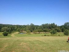 8462 Carney Hollow Rd, Springwater, NY 14572