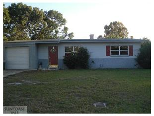 5756 56Th Ter N, Saint Petersburg, FL