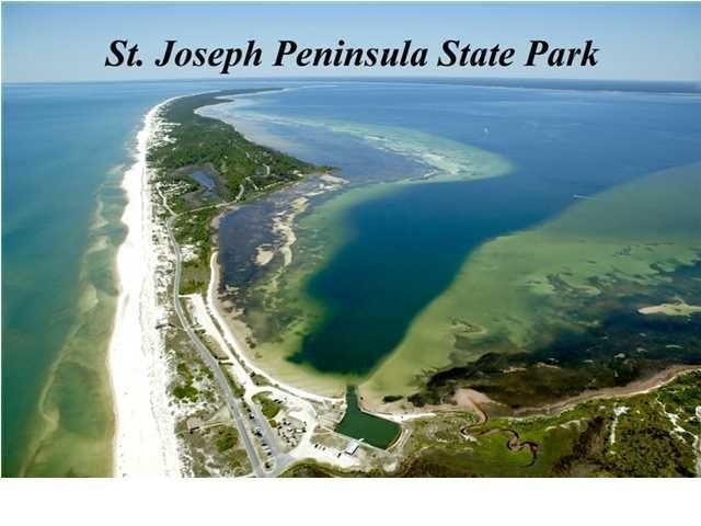 port saint joe Port st joe, florida 8,017 likes 22 talking about this sleepy little town of florida's gulf coast slow pace, great fishing, beautiful beaches.