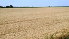 47.37 Acre E1/2 Se1/4 Section 15-T155n-R7, Rugby, ND 58368