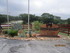 118 Stallion Estates Dr, Blanco, TX 78070