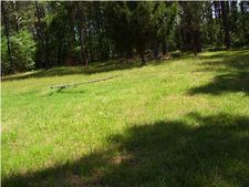 8465 Brown Meadow Ln, Adams Run, SC 29426