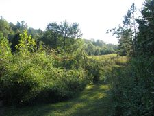 Stone Ridge Dr Lot 8, Andersonville, TN 37705