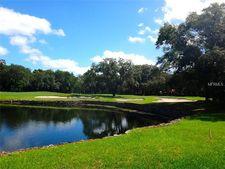 1027 Guisando De Avila, Tampa, FL 33613