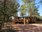 2142 N North Woods Drive, Overgaard, AZ 85933
