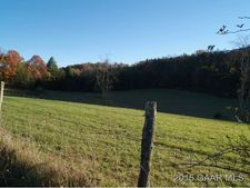 Tower Hill Rd, Williamsville, VA 24487