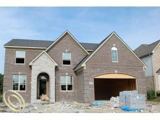 49491 W Central Park, Shelby Township, MI