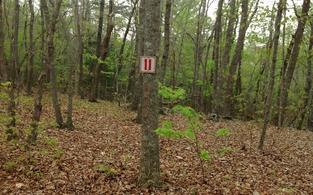 Zachary Ln Lot 11 Blairsville Ga 30512 Home For Sale