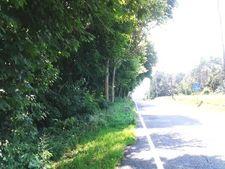 Parcel44a New Park Rd, New Park, PA 17352