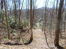 Turnabout Ct # 48, Waynesville, NC 28785