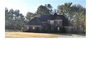 11041 Andrews Park Dr, Olive Branch, MS 38654