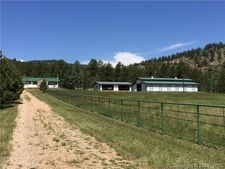 8463 County Road 92, Lake George, CO 80827