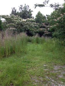 224 Haws Run Rd, Jacksonville, NC