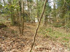 Locust St Unit 5, Mount Gretna, PA 17064
