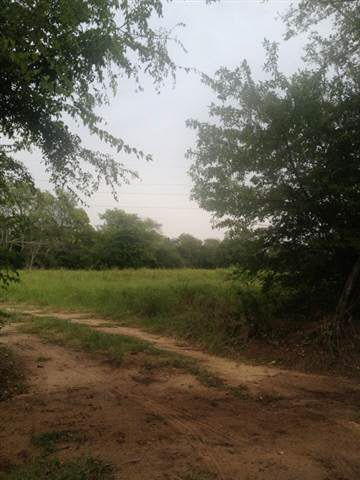 County Road 3401 Bullard, TX 75757