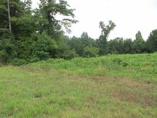 10.55 Acres, Wedowee, AL 36278