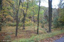 Old Propst Gap Rd, Franklin, WV 26807