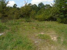 10 05 Acres Luke Smith Rd, Macon, GA 31211