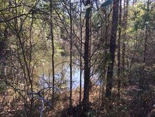 Juniper Rd, Seminole, AL 36574