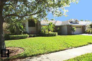 679 House Wren Cir, Palm Harbor, FL