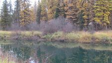 254 River View Dr, Yaak, MT 59935