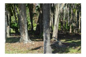 1216 Royal Oak Dr, Winter Springs, FL 32708