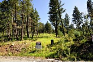 217 Cummings Dr # 1, Ruidoso, NM 88345