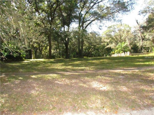 mls t2785312 in thonotosassa fl 33592 home for sale