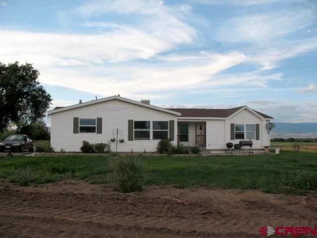 3136 old wagon rd delta co 81416 home for sale and