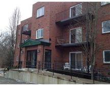 60 Broadlawn Park Apt 3C, Boston, MA 02467