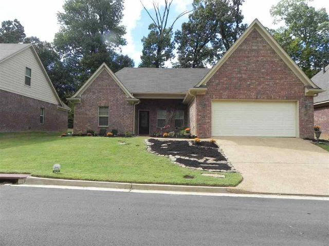 Hamilton county tennessee property search