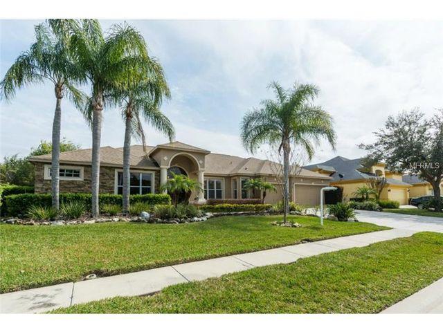 Homes For Sale In Lansbrook Palm Harbor Fl