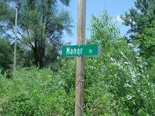 E Manor Dr Lot 1 And Hill St Dr, Hopkins Park, IL 60944