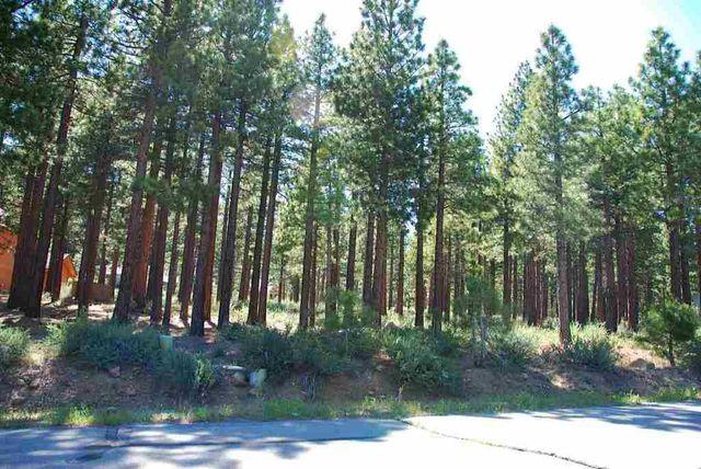 500 Yellow Pine Rd, Reno, NV 89511 Main Gallery Photo#1