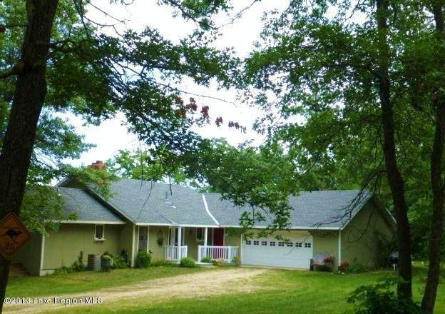 48717 painted leaf rd henning mn 56551