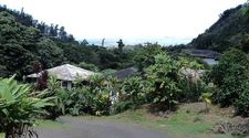 475 Iao Valley Rd, Wailuku, HI 96793