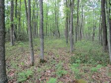 Lot 38 Eagleton Forest Subdivision Rd, Beech Creek, PA 16822