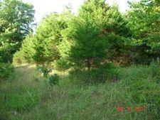 Indian Grove Rd, Hartville, MO 65667