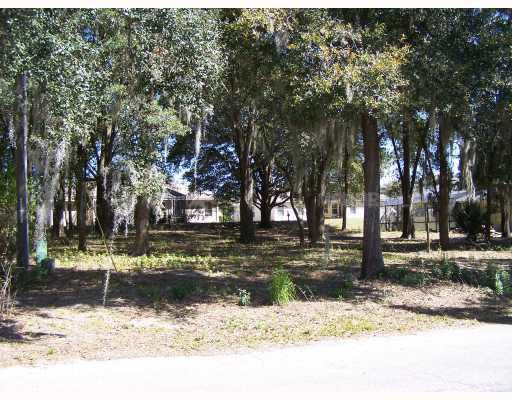 S fish camp rd eustis fl 32726 land for sale and real for Fish camp lake eustis