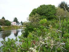 320 Otsego St Sw, Ocean Shores, WA 98569