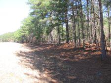 Tract B Highway 341, Forsyth, GA 31029