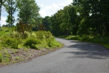 L62 Mockingbird, Harrisburg, PA 17112