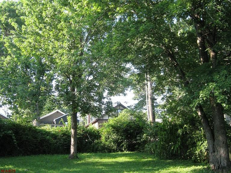 singles in richmond dale Your richmond dale real estate search starts here view 2 active homes for sale  in richmond dale, oh and find your dream home, condo, townhome, or single.